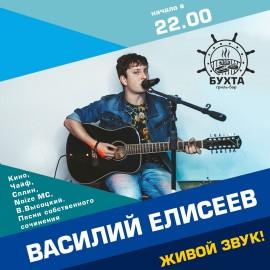Василий Елисеев (акустика)